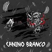 Canino Branco by Prismv