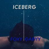 Iceberg by Foxy