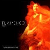 Flamenco de Mixsa