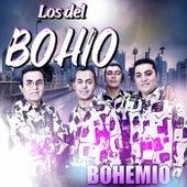 Bohemio by Los Del Bohio