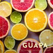 Guapa (feat. Muerdo) de Tu Otra Bonita