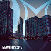 Miami Hits 2019 - EP by Various Artists