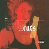 MELT de The Cats