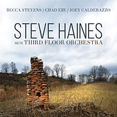 Steve Haines and the Third Floor Orchestra by Steve Haines and the Third Floor Orchestra
