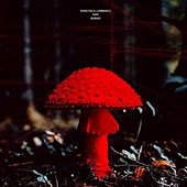 Rain (Remixes) von Francesca Lombardo