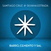Barro, Cemento y Sal de Santiago Cruz