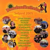 Dansebandfestivalen Seljord 2005 de Various Artists
