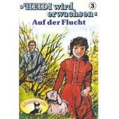 Heidi wird erwachsen, Folge 3: Auf der Flucht von Heidi