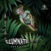 Illuminate by Various