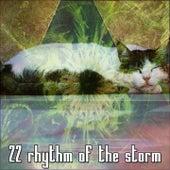 22 Rhythm of the Storm de Thunderstorm Sleep