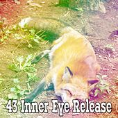 43 Inner Eye Release by Deep Sleep Relaxation