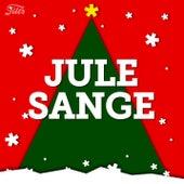 Julesange 2019 - Julemusik og julehits til julehyggen, julefrokosten og juleaften by Various Artists