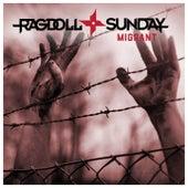 Migrant von Ragdoll Sunday