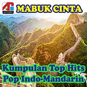Mabuk Cinta - Kumpulan Top Hits Pop Indo-Mandarin by Various Artists