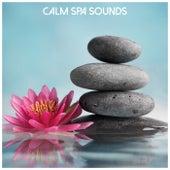 Calm Spa Sounds von Massage Music