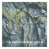 You Don't Know What Love Is by Dinah Washington