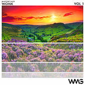 MasterClass: WoNK, Vol. 1 - EP by Various Artists