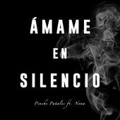 Ámame en Silencio by Pinche Pañales