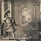 Concerto grosso at Organ by David Ennarqua