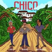 Chico (feat. Kap G) de Brownboi Maj