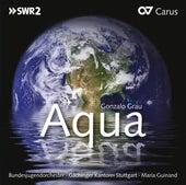 Gonzalo Grau: Aqua de Mariá Guinand