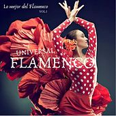 Lo Mejor del Flamenco, Vol. I by Flamenco Universal