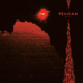 Midnight and Mescaline by Pelican