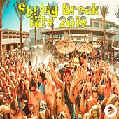 Spring Break Hits 2019 von Various Artists