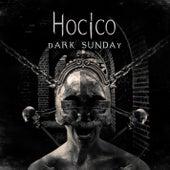 Dark Sunday von Hocico