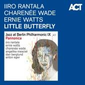 Little Butterfly (Pannonica) by Iiro Rantala