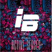 Active Senses de Various Artists