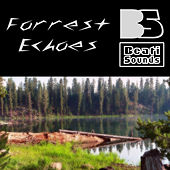 Forrest Echoes by Beati Sounds
