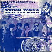 Shot You Down by True West