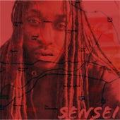 Sensei by Tez Banga