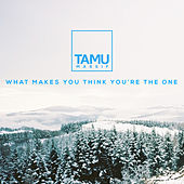 What Makes You Think You're The One by Tamu Massif