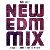 New EDM Mix House Electro Dance Music - Nightclubs, Party by Various Artists