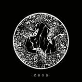 C H O N  02 de Various