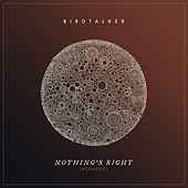 Nothing's Right (Acoustic) von Birdtalker