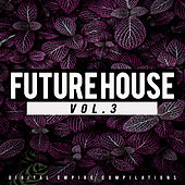 Future House, Vol.3 - EP by Various Artists