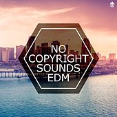No Copyright Sounds EDM by Various Artists