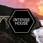 Intense House by Various Artists