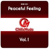 Peaceful Feeling, Vol.1 de Various Artists
