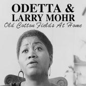 Old Cotton Fields At Home de Odetta