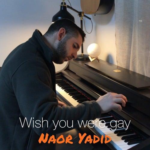 Wish You Were Gay de Naor Yadid