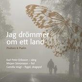 Jag drömmer om ett land von Erland Svenungsson