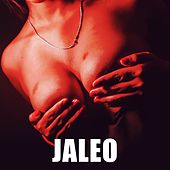 Jaleo by DJ Alex