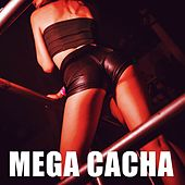 Mega Cacha by DJ Alex