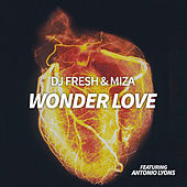 Wonder Love von DJ Fresh