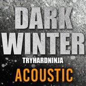 Dark Winter (Acoustic) de TryHardNinja