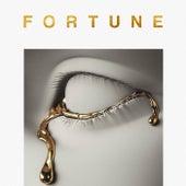 Fortune de DJ Kadel